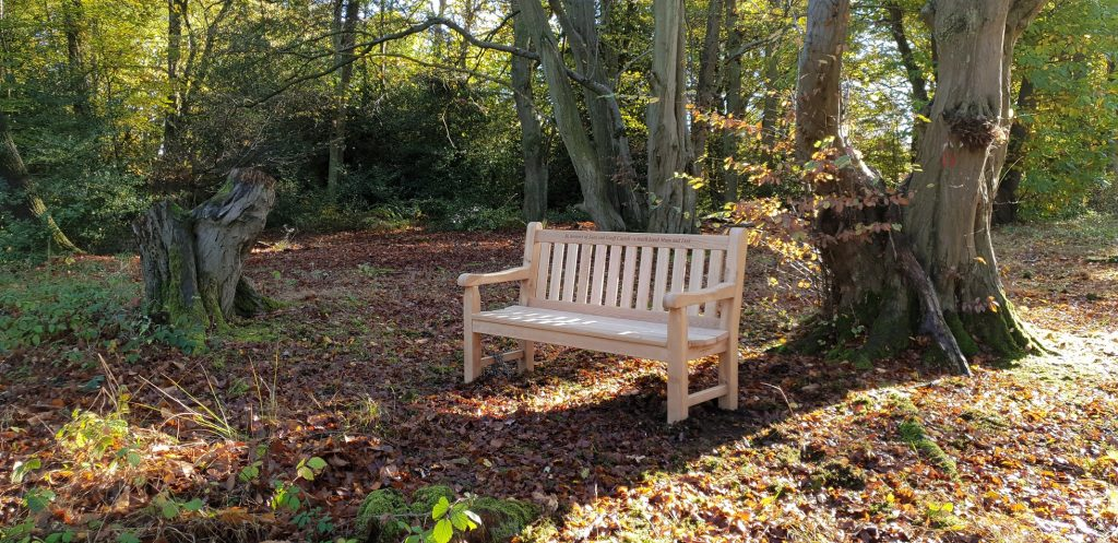 Classic memorial bench in a woodland setting